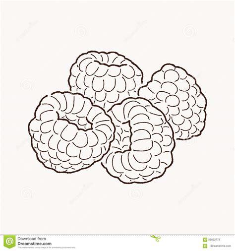 raspberry bush clipart black and white raspberry clipart black and white