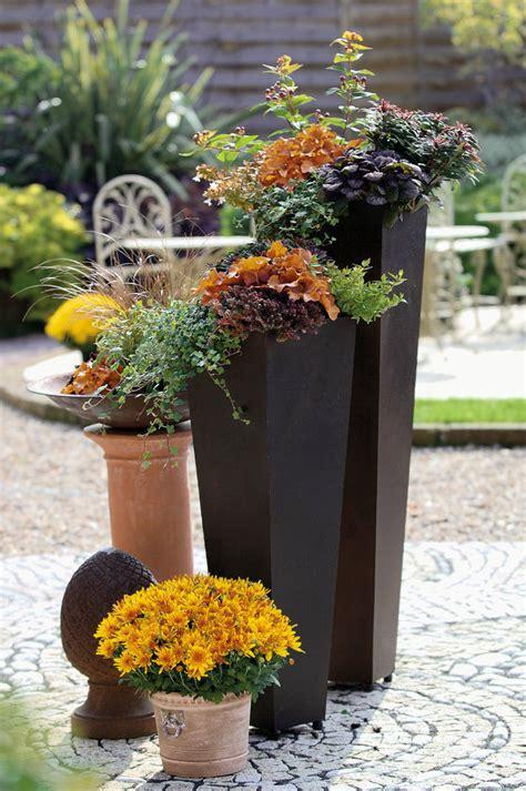 Herbstbepflanzung Für Töpfe Und Kübel  Mein Schöner Garten