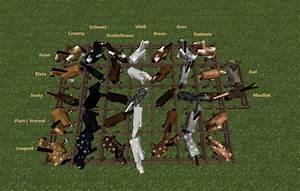 Minecraft Horse Chart Minecraft Horse Breeds Conquest By Shedew On Deviantart