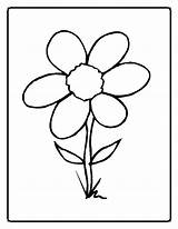 Colorear Margaritas Imprimir Dibujos Margarita Coloring Flower sketch template