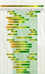5 Tips To Start Your Garden