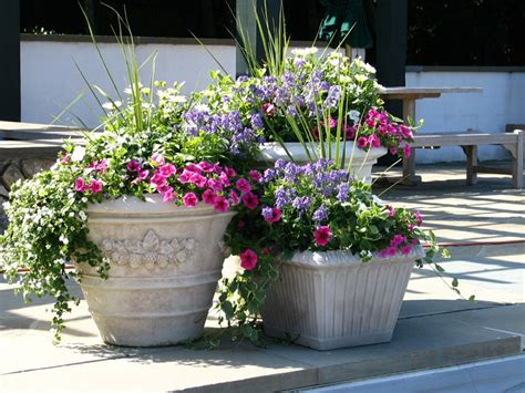 best 25 outdoor flower pots ideas on deck