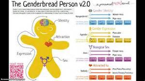 Screencast1: Genderbread Person 2 0 - YouTube