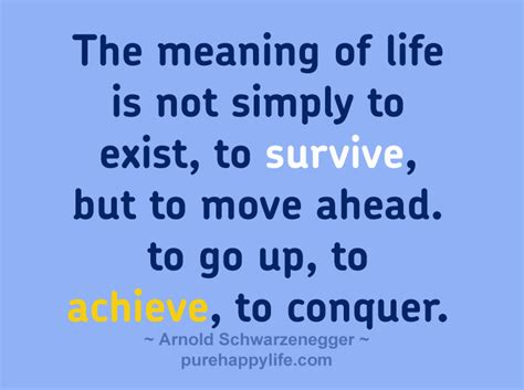 what is the meaning of a meaning of life wisemovement