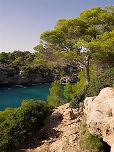 Auto Mieten Auf Mallorca : ferienhaus ferienwohnung in calas de mallorca g nstig ~ Jslefanu.com Haus und Dekorationen