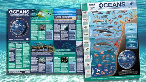 Download Your Free 'oceans' Poster  Openlearn  Open. Alcoholics Anonymous Washington D C. Best Retail Website Designs Drone Shot Down. South Africa Luxury Safari Donating Junk Cars. Dean Bank Mortgage Rates Miami Mortgage Rates. Meridian Youth Psychiatric Center. Find A Mortgage Company Business Loan Deposit. Vet Tech Schools In Jacksonville Fl. Culinary Schools In Texas Albany Ny Colleges
