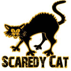 scaredy cat scaredy cat series the minecraft project