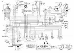 1987 Harley Davidson Softail Custom With Evo Motor Turn Signals Wiring Diagram