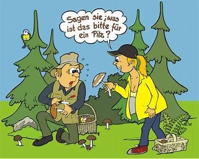 Auf Cartoon Pilze Herbst Wald Toonpool Cartoons