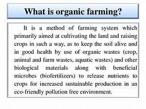 Organic Farming in Herbal spices by Shivanand M.R
