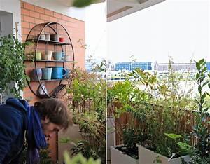 Cacher Vis A Vis Jardin : cr er un d cor sur un balcon avec des plantes r sistant au ~ Dailycaller-alerts.com Idées de Décoration