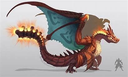 Pokemon Monster Palmer Hunter Rj Charizard Fan