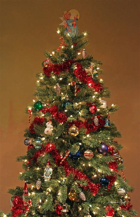 fashioned christmas tree photograph  suzanne gaff