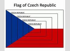 Flag of Czech Republic flag czech republic funny