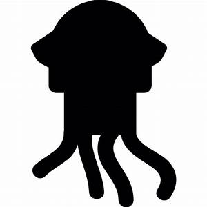 Squid Vectors, Photos and PSD files | Free Download