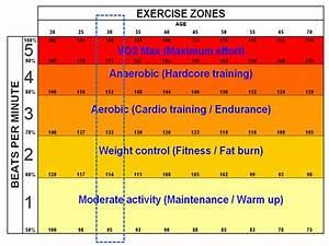 Trainingsherzfrequenz Berechnen : trainieren like a boss die 5 herzfrequenzzonen navigation abenteuer emotionen ~ Themetempest.com Abrechnung