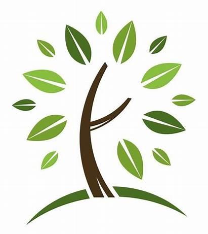 Lawn Care Landscaping Clip Tree Landscape Services