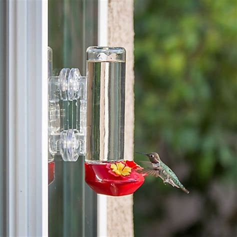 garden song 174 window mounted glass hummingbird feeder