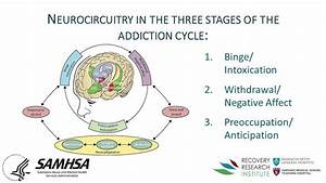 Why Addiction Is A  U201cdisease U201d And Why Is It Important