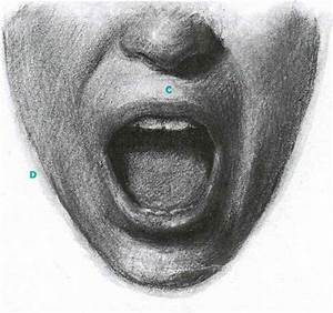 How The Mouth Changes Shape As It Opens - Facial Expressions