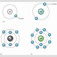 21 Elements And Atoms The Building Blocks Of Matter  Anatomy And Physiology