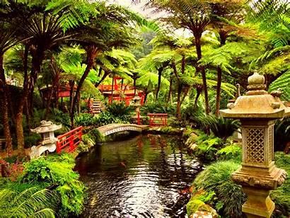 Garden Japanese Wallpapers 1080p Outdoors