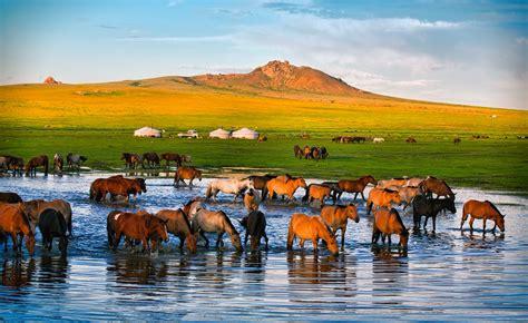mogul khan   twitter mongolia nature