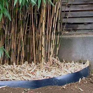 Barrière Anti Rhizome Castorama : barri re anti rhizomes vente barri re anti rhizomes ~ Dailycaller-alerts.com Idées de Décoration