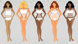 Women U2019s Body Types  Find Out Which Body Shape You Are  U2013 Sheknows