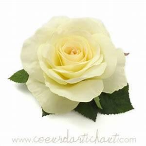 Fleur Rose Et Blanche : images de fleurs roses blanches ~ Dallasstarsshop.com Idées de Décoration