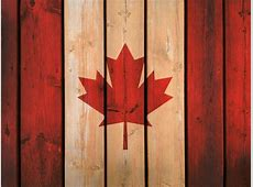 Canada Wood seeks new possibilities in the Chinese