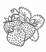 Obst Wuppsy Getdrawings Pintados Manteles Cowberry Viatico Bordar sketch template