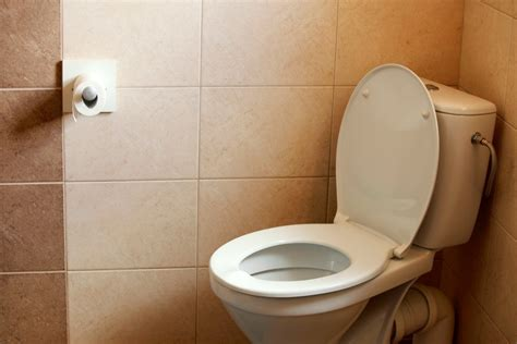 removing dried urine   bathroom thriftyfun