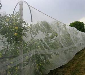 Filet Pour Arbre Fruitier : filet anti insecte au m tre pour arbre altcarpo ~ Melissatoandfro.com Idées de Décoration