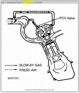Locate Pcv Valve  I Have A 1993 Toyota Camry 4cyl 2 2 5sfe Engine