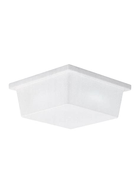 7916ble 68 two light outdoor wall ceiling flush mount