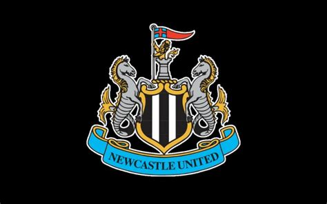 Newcastle players finally return to training after 12 days