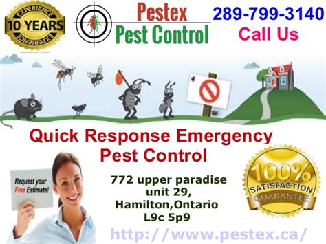 Best & Affordable Pest Control Services In Hamilton. Ohio Auto Insurance Company Sata Dvd Drivers. Icm School Of Business Cheapest Hotels Vienna. Bond Clinic Tallahassee Fl Nau Online Classes. Non Profit Debt Relief Companies. Electricians Albany Ny Cheap Advertising Pens. New Jersey Insurance Codes Health Care Fraud. Christian Angel Investor How To Pick Perfume. Securitas Security Usa Small Office Space Nyc