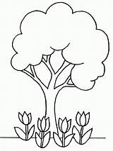 Coloring Apple Tree Pages Adults Popular sketch template