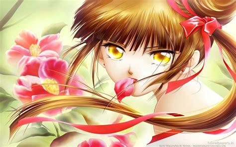 vampire princess miyu wallpapers hd wallpapers id