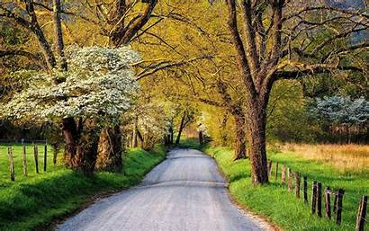Country Road Springtime Countryside Background Wallpapers Roads