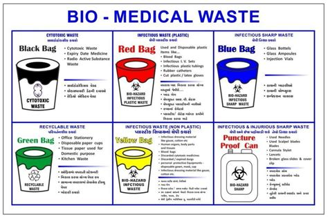"""biomedical Waste Management Rules Amended To Protect. Delta Airlines Credit Card Sql Server Profile. Video Editor Sony Vegas 0 Apr On Credit Cards. Collision Coverage Auto Insurance. University Of Florida Accelerated Nursing Program. Best Law Schools In California. Identity Management Strategy. Wireless Home Phone Review How To Fax Online. How Long Do Allergies Last Money Market Fund"
