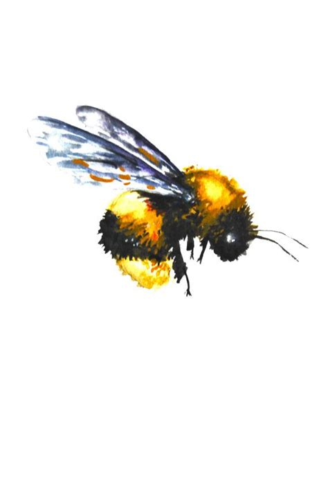 Flying Bee Drawing