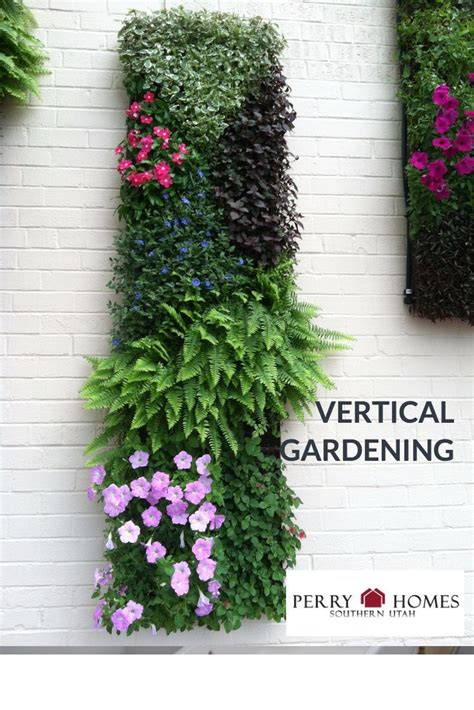 Vertical Gardening Techniques by There Are Many Uses For Vertical Gardening Techniques The