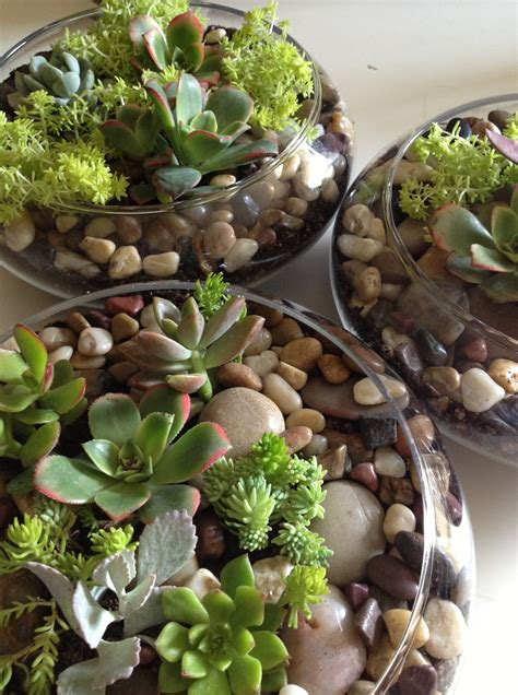 Diy Succulent Wedding Centerpiece Its Jou Life
