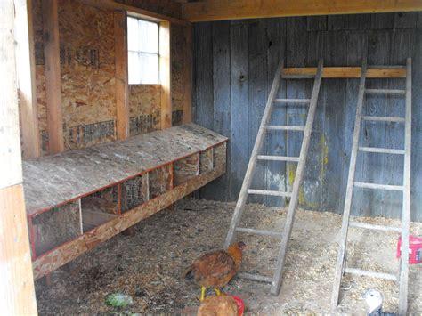 chicken coops    swing sets     chicken coop aka  chickens