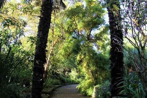 Botanischer Garten Roscoff by Der Exotische Und Botanische Garten Roscoff Photo 2