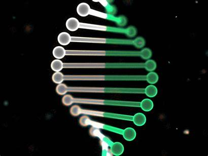 Dna Loop Animation Element3d Experiment Adn Effects