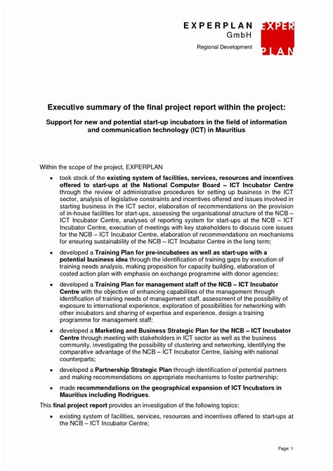 research paper executive summary   marketing plan templates  premium