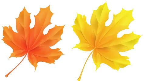 yellow leaves clipart clipground